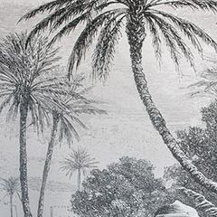 pose de papier peint décoratif à Bordeaux